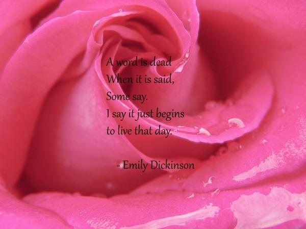 Emily Dickinson WW quote
